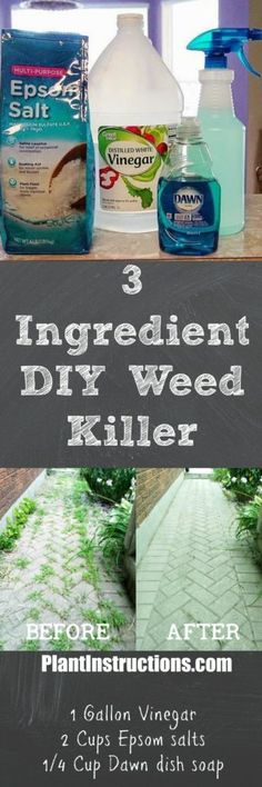 This DIY weed killer only uses 3 all natural ingredients and will eliminate all weeds within a few days! Super cheap to make and 100 safe! Organic Gardening, Gardening Tips, Vegetable Gardening, Vegetables Garden, Gardening Services, Veggie Gardens, Weed Killer Homemade, Dawn Dish Soap, Lawn Care