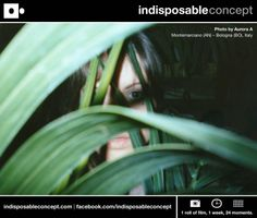 Indisposable Concept | 1 roll of film, 1 week, 24 moments