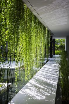 lovely play of light and shade / MIA Design Studio. Project: Pure Spa. Location: Danang, Vietnam.