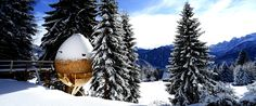 claudio beltrame's egg-shaped treehouse offers panoramic views of the italian alps