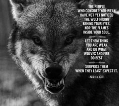 Famous Wolves Quotes Images Please visit our website, we have a lot of funny and interesting photos. Wolf Qoutes, Lone Wolf Quotes, Wolf Pack Quotes, Be Wolf, Wolf Love, Wisdom Quotes, True Quotes, Strong Quotes, Loner Quotes