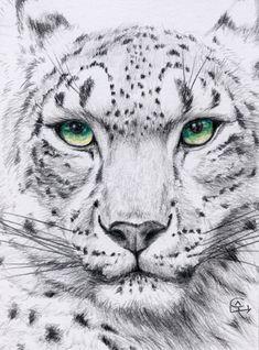 Леопардовые Тату, Эскизы Животных, Красивые Кошки, Картины С Видами Природы, Животные Из Ткани, Картины Животных, Реалистичные Рисунки, Милые Рисунки, Искусство