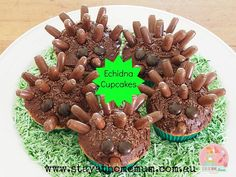 My boys loved helping me make these delicious and adorable Echidna cupcakes! Animal Party Food, Animal Themed Food, Kid Cupcakes, Animal Cupcakes, Decorated Cupcakes, Aboriginal Food, Aboriginal Dreamtime, Aboriginal Education, Australia Day Celebrations