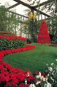 Callaway Gardens Christmas - (c) Georgia Department of Economic Development.