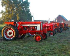 Red Tractor Line Up Great For Little Farmer Or by terrymillsphoto, $18.00