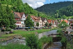 Black Forest - Wikipedia, the free encyclopedia