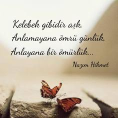 Nefis Yemek Tarifleri Please visit our site for directions. Meaningful Words, Cool Words, Cool Designs, Yummy Food, Yummy Recipes, Site Visit, Argo, Cooking, Quotes