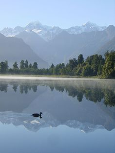 Mirror Lake, Westland National Park, South Island, New Zealand