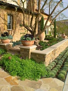 designs southwest landscape design ideas awesome southwest