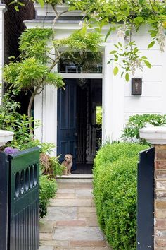 City front garden path, front path, garden front of house, front Front Garden Path, Front Path, Garden Front Of House, House Front, Garden Paths, Garden Landscaping, Landscaping Ideas, Wakefield, Victorian Front Garden
