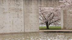 Tadao Ando                                                                                                                                                                                 More