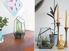 To us Urban Jungle Bloggers plants are like dear treasures. And like every treasure these plants deserve a beautiful and stylish home to thrive and grow. These could be all sorts of nice plant pots...