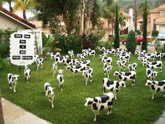 LOL How Would You Like To Wake Up THIS On Your Front Lawn Birthday Ornaments Signs I So Do This For Someone