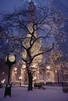 Chicago, looking magical on a snowy evening.