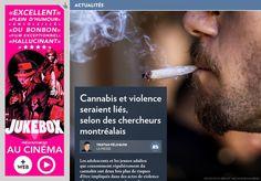 Étude : un lien entre cannabis et violence - La Presse+