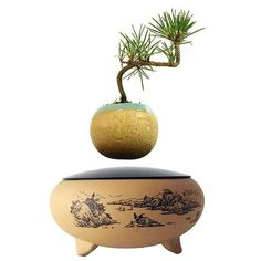 Details Levitating tree is now a reality! Why settle for an ordinary planter? Our Air Terra will enhance any home or office. Perfect conversation piece - your Potted Plants, Plant Pots, Floating Plants, Home Decor Items, Vase, Gifts, Pot Plants, Pot Plants, Presents
