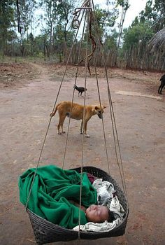 Baby in hanging cradle with dog standing guard in tribal region's remote jungle. Ranjun Basu, c 2011 Hanging Cradle, Kids Sleep, Swings, Remote, Baby, Photography, Child, Dog, Diy Dog