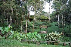 Selva Negra -- Nicaragua