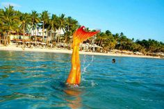 The Philippines Mermaid Swimming Academy - what?! This experience looks and sounds amazingly fun!