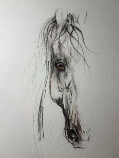 Pencil Sketches Of Animals, Horse Pencil Drawing, Eagle Drawing, Horse Drawings, Animal Drawings, Abstract Horse Painting, Watercolor Horse, Feather Painting, Horse Stencil