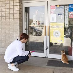 170419 Gongju cat vs. Jaejoong as Jaejoong takes VLive for a tour of his hometown