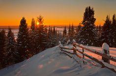 Widescreen Wallpaper: winter