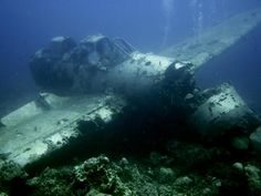 Almost all of the photos on this board make wonderful inspiration (Sunken Plane From WWII Near Koror On Palau)