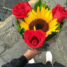 Getting flowers never gets old🌹💙 Sunflowers And Roses, My Flower, Tulips, Beautiful Flowers, Bloom Where Youre Planted, Flower Boxes, Garden Planters, Floral Arrangements, Wedding Flowers