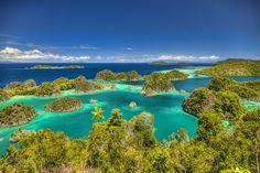 L'archipel des Raja Ampat en Indonésie, littéralement « les quatre rois », se situe dans le fameux Triangle de Corail, qui abrite la plus importante biodiversité marine du monde. Son décor naturel est incroyable, autant hors de l'eau – avec ses petits îlots de végétation – que sous l'eau – avec ses poissons et ses coraux colorés