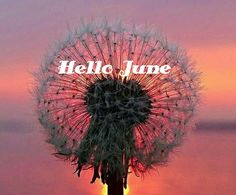 Hello June. Just_Mel Month quotes