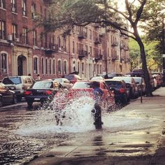 New York City summer: there's nothing quite like it.