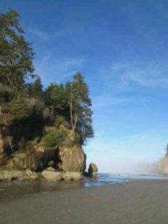 Washington coast elephant rock