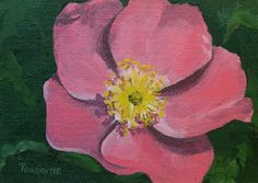 images small painted flowers   PAINTINGS IN OIL