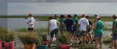 Mark your calenders for 2015 National Estuaries Week Sept 19-26! Learn how you can take part at https://www.estuaries.org/national-estuaries-week #NationalEstuariesWeek #RAEstuaries #estuaries #iheartestuaries #september