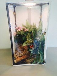 Educational Science Butterfly Cage-Butterfly, Insect, Animal Rearing/Breeding/Display Cage, 16.5 x 16.5 x 48-inches, 13.75 Cu. Ft.(LH100)  Enclosure protects your insects, plants and animals from predators, parasites, and parasitoids(ants, tiny tachnid flies, wasp, aphids, and mites)  Built in vertical and horizontal vinyl liners for catching frass, holding substrates, and containing spills. Compact units fit in large backpacks; ideal for field work https://pets.boutiqu