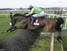 Ruby Walsh riding Kauto Star clears the final fence before going on to win the JNWine Champion Chase at Down Royal Racecourse on November 1, 2008 in Down Royal, Ireland.