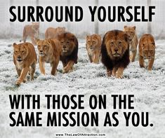 Remember the old saying... You become like the people you associate with!