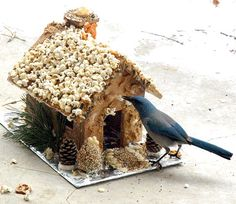 Make a ginger-bird house to feed the birds like this onefrom Backyard Farming