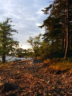Käsmu, one of my favourite places