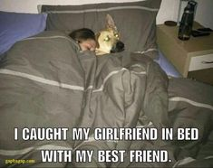 Funny Picture Of Best Friend vs. Girlfriend