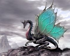 Dragon wallpaper -  like the wings- tatt material maybe