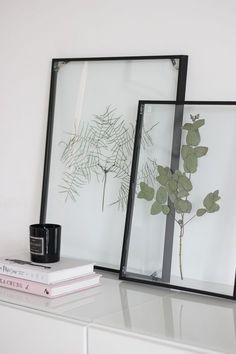 Mit diesem Floating Frame Herbarium verleiht ihr eurer Wohnung einen botanischen Look und sorgt für einen Blickfang im Wohnzimmer!