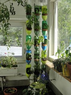 1000 images about recycle us on pinterest sodas how to for What can you make out of water bottles