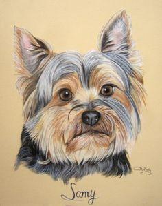 york dessin Animal Paintings, Animal Drawings, Yorkshire, Labrador, Rainbow Bridge, Painting Tips, Dog Art, Colored Pencils, Cute Animals
