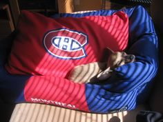 Chien relax Canadiens, photo soumise par Eric Duval / Lounging Habs dog, submitted by Eric Duval