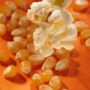 How to Cook Popcorn Without Oil   LIVESTRONG.COM