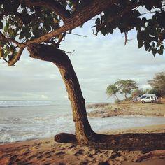 Already missing Puerto Rico #eidon #eidonsurf #beach #puertorico #love #sea #salt #water #waves #goodtimes #takemeback #trees #surf #surfing #lifeisswell #alive #alldaylong #livetravelsurf #beautiful