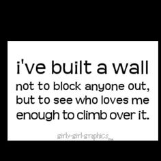 This is so true. Trying to break through a wall right now, but the closer I get to the top, the more bricks the person lays down...praying for perseverance to make it to the other side. Hoping that God just puts a wrecking ball through it!