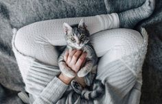 The Just Cats Veterinary Clinic and Cattery in Dublin, Ireland, is searching for the perfect person for the paid full-time gig of a pro cat cuddler. World Cat, Cattery, Winter House, Autumn Inspiration, Cute Photos, Cool Cats, Hygge, Cuddling, Dog Cat
