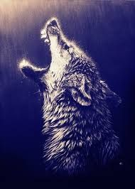 wolf hipster